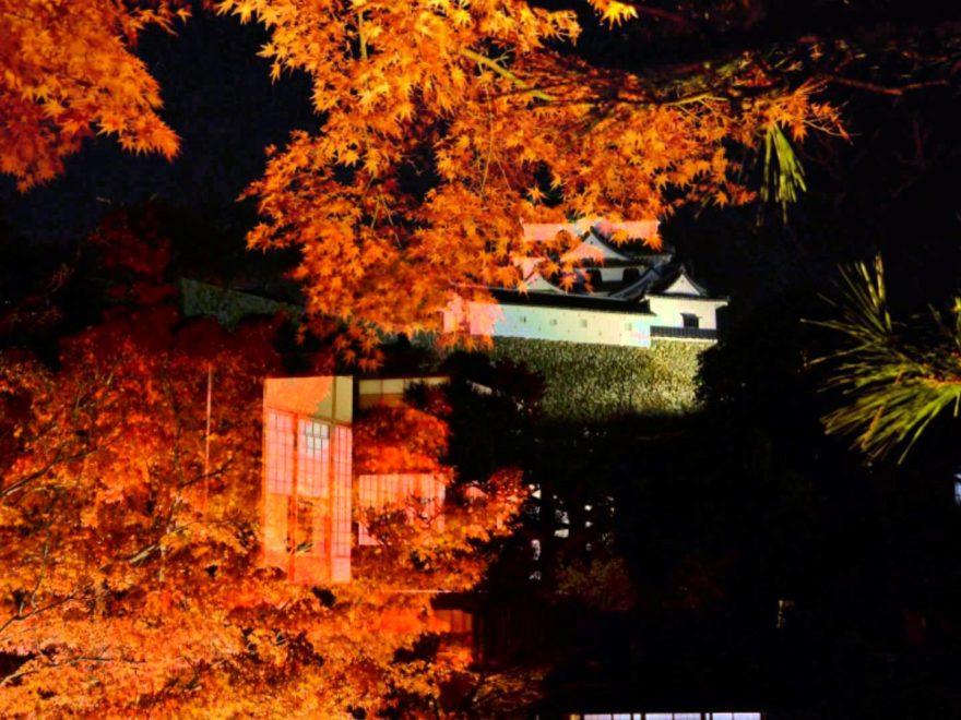 彦根城・玄宮園(滋賀) | 2018年紅葉ライトアップ情報