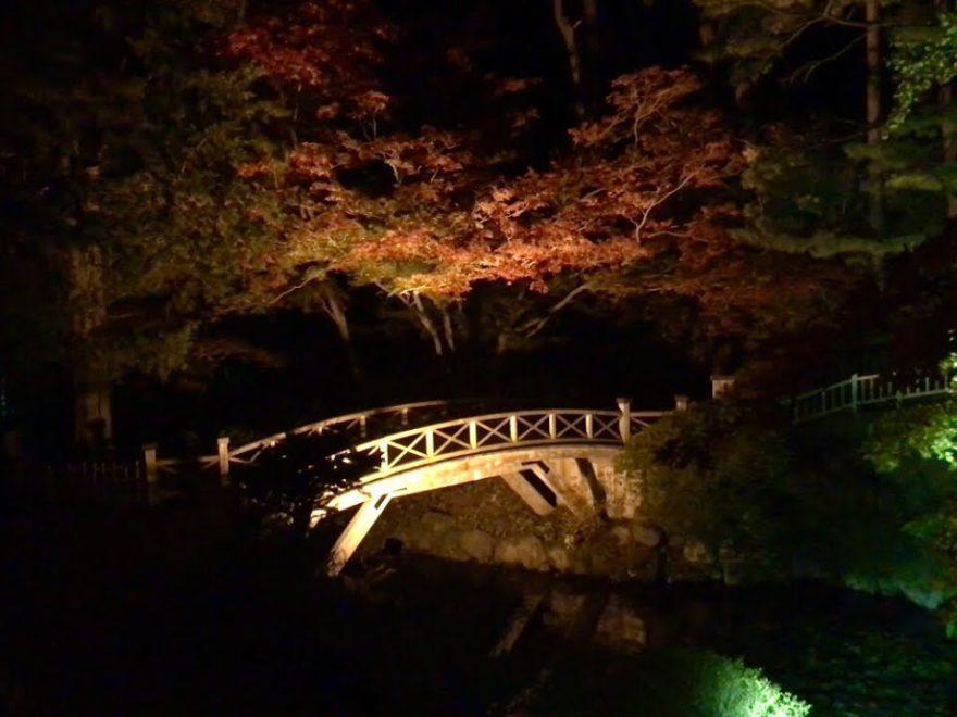 香雪園(見晴公園)(北海道) | 2018年紅葉ライトアップ情報