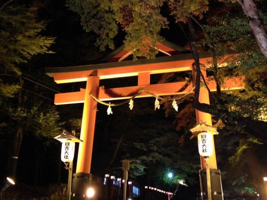 日吉大社(滋賀)紅葉ライトアップ・見頃情報