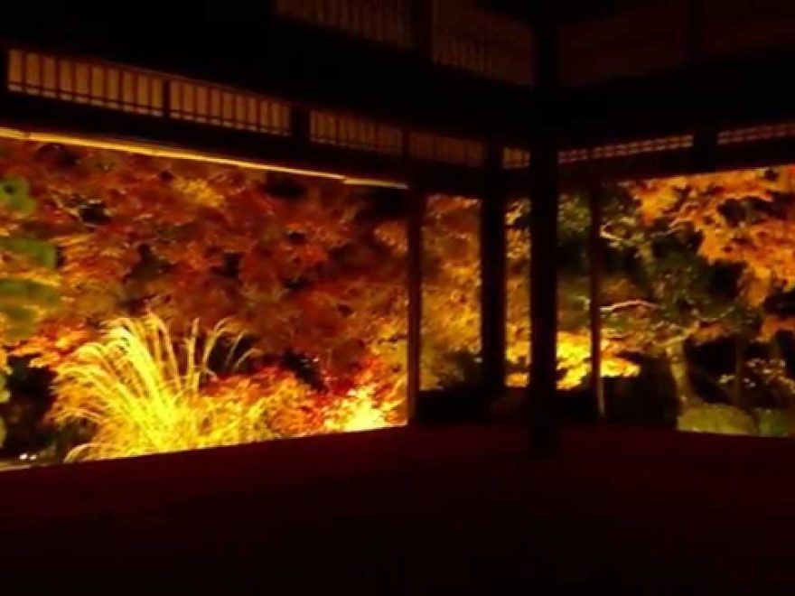 南禅寺 天授庵(京都) | 2018年紅葉ライトアップ情報