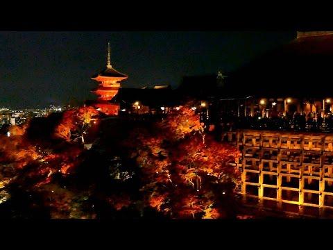 清水寺(京都) | 2018年紅葉ライトアップ情報