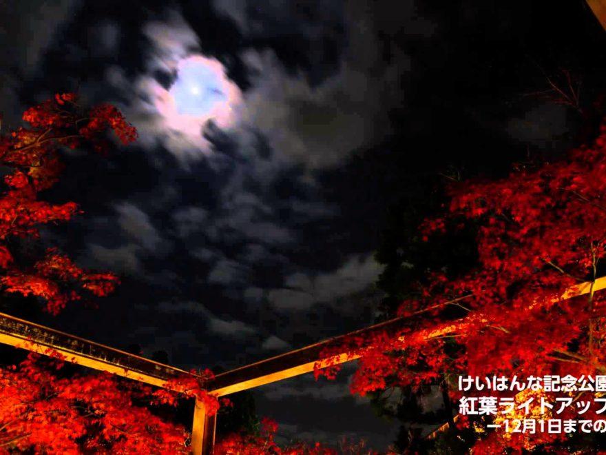 水景園(京都) | 2018年紅葉ライトアップ情報