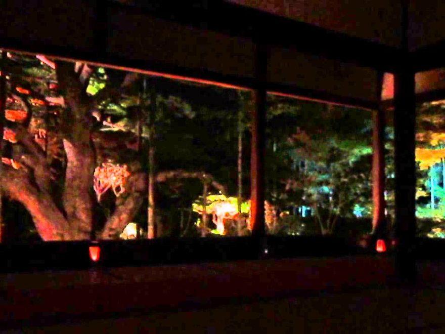 宝泉院(京都) | 2018年紅葉ライトアップ情報