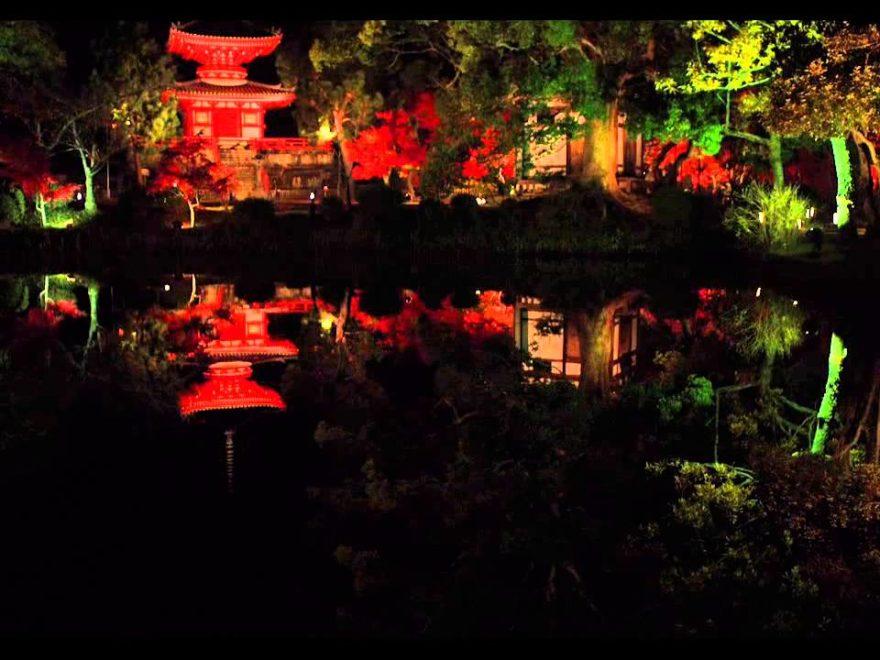 大覚寺(京都) | 2018年紅葉ライトアップ情報
