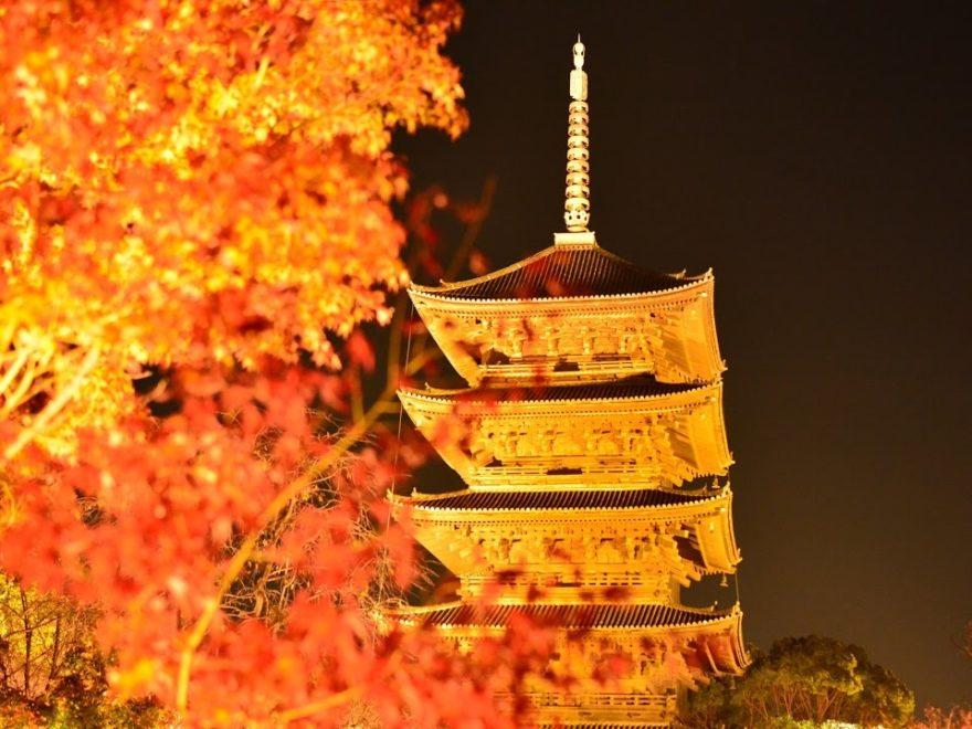 東寺(京都) | 2018年紅葉ライトアップ情報