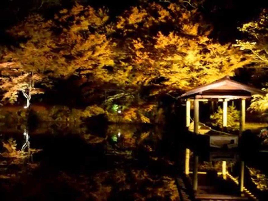 大本神苑(京都) | 2018年紅葉ライトアップ情報