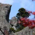 寒霞渓の紅葉の美しさは登山でも行ける絶景の頂!動画もご紹介します