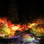 中野もみじ山・紅葉床(青森) | 2019年紅葉ライトアップ・見頃情報