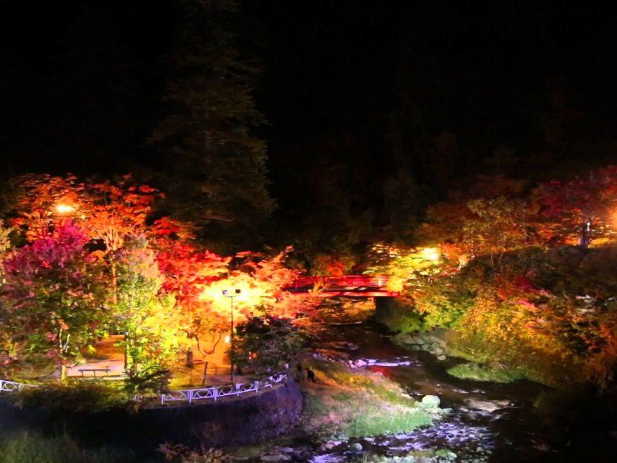 秋の紅葉ライトアップ「光のファンタジー」