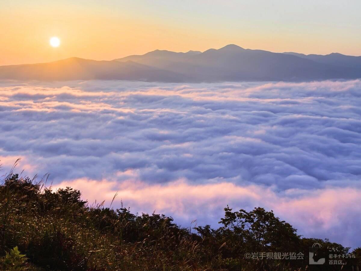 雲海スポット画像