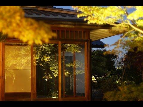 須磨離宮公園(兵庫) | 2018年紅葉ライトアップ情報