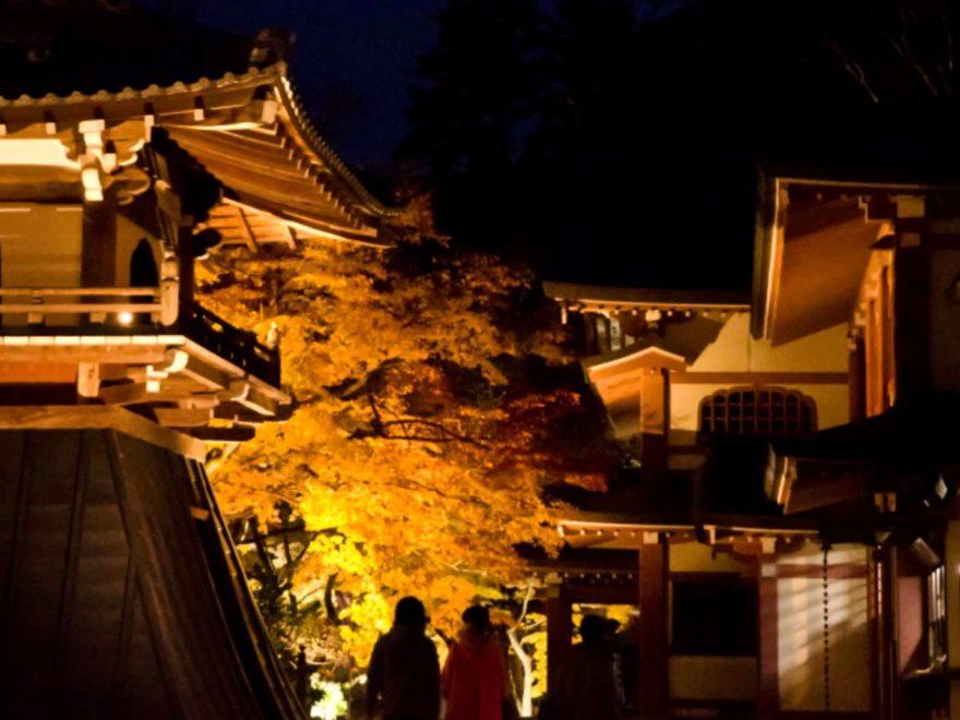 永源寺(滋賀) | 2018年紅葉ライトアップ情報