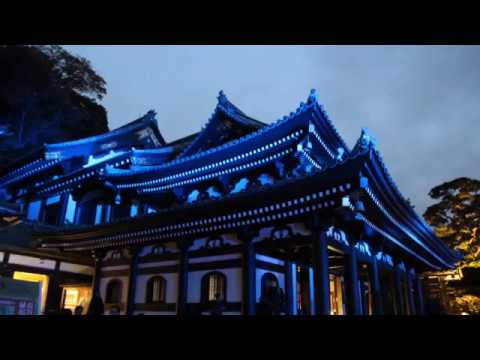 鎌倉 長谷寺紅葉ライトアップ(夜間特別拝観)