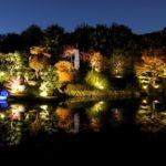 目白庭園(東京) | 2019年紅葉ライトアップ・見頃情報