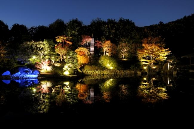 目白庭園_秋の庭園ライトアップ