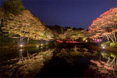 六甲高山植物園紅葉