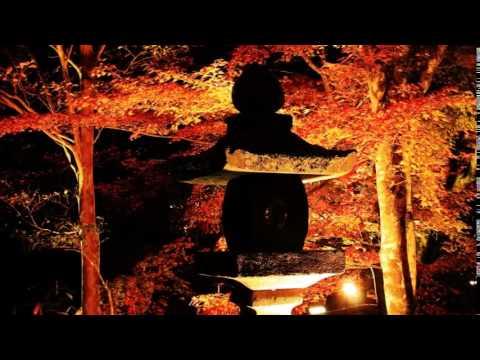 宝生寺(大分) | 2018年紅葉ライトアップ情報