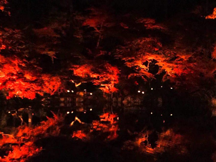 醍醐寺(京都) | 2018年紅葉ライトアップ情報