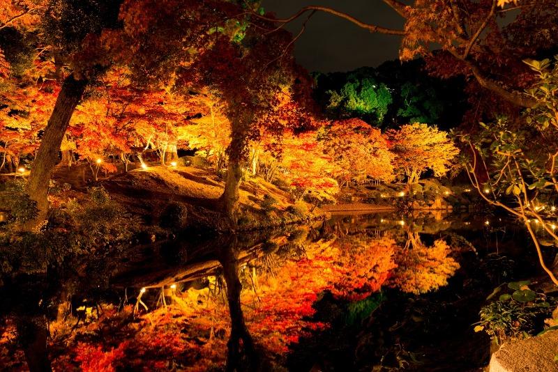 縮景園紅葉ライトアップ