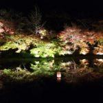 御船山楽園(佐賀) | 2020年紅葉ライトアップ・見頃情報
