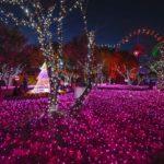【中止】みろくの里(広島) | 2020年イルミネーション・ライトアップ情報