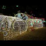 広島市 平和大通り他(広島) | 2020年イルミネーション・ライトアップ情報