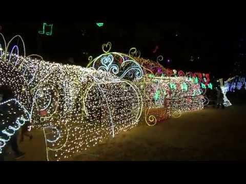 広島市・平和大通り、他(広島) | 2018年イルミネーション・ライトアップ情報