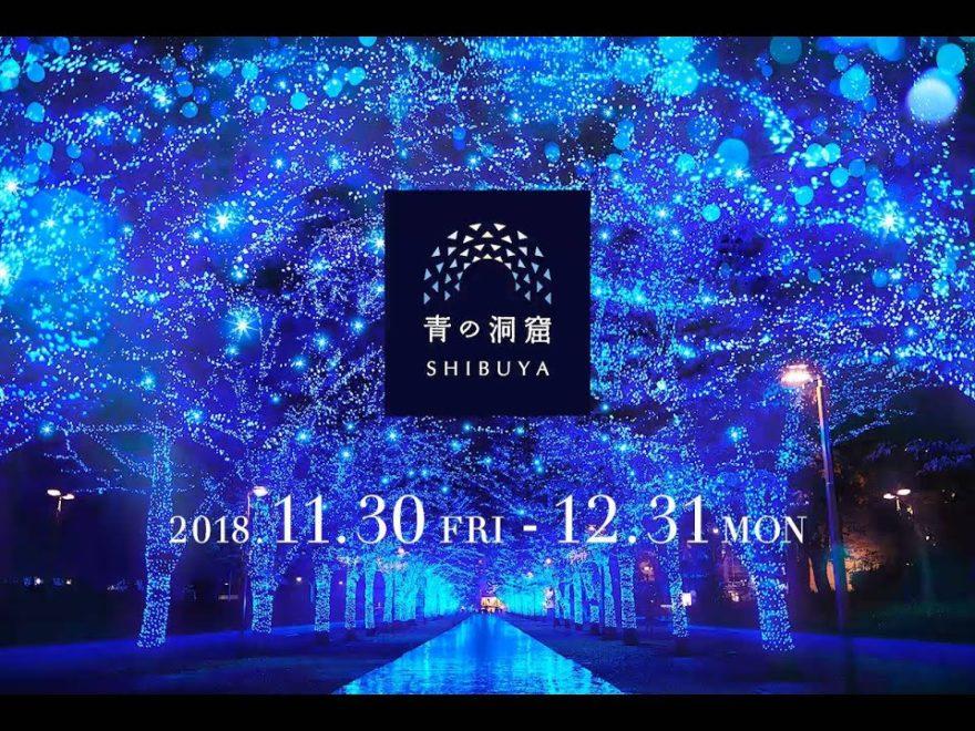 代々木公園ケヤキ並木~渋谷公園通り(東京) | 2018年イルミネーション情報