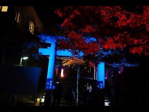 紅葉八幡宮(福岡) | 2018年紅葉ライトアップ情報