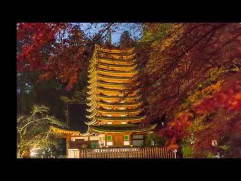 談山神社(奈良) | 2018年紅葉ライトアップ情報