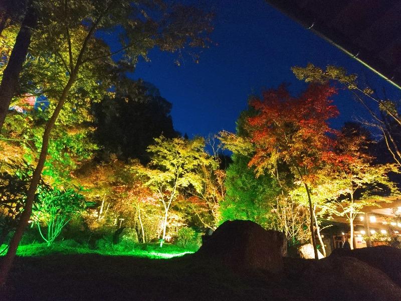 高野寺(シャクナゲ寺)_003