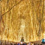 定禅寺通(宮城県仙台市) | 2020年イルミネーション・ライトアップ情報