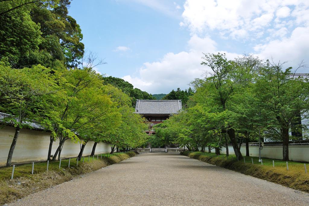 醍醐寺画像