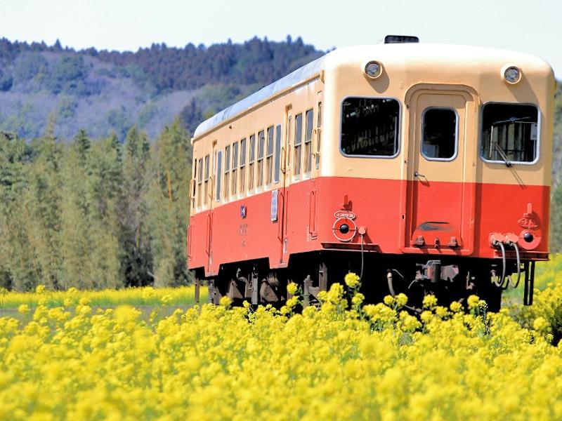小湊鉄道画像