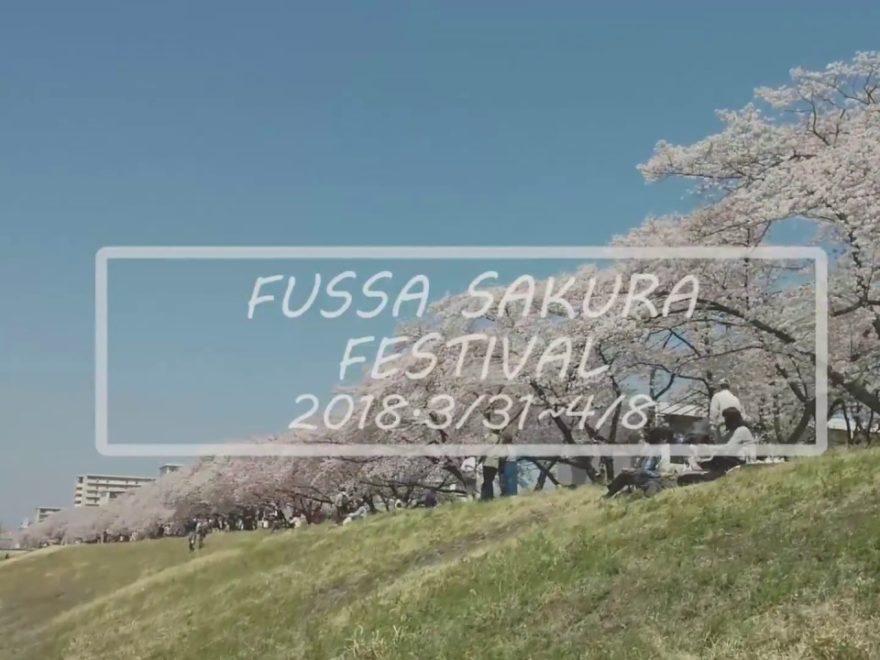 福生市 多摩川堤防沿い(東京) | 2019年夜桜ライトアップ・見頃情報