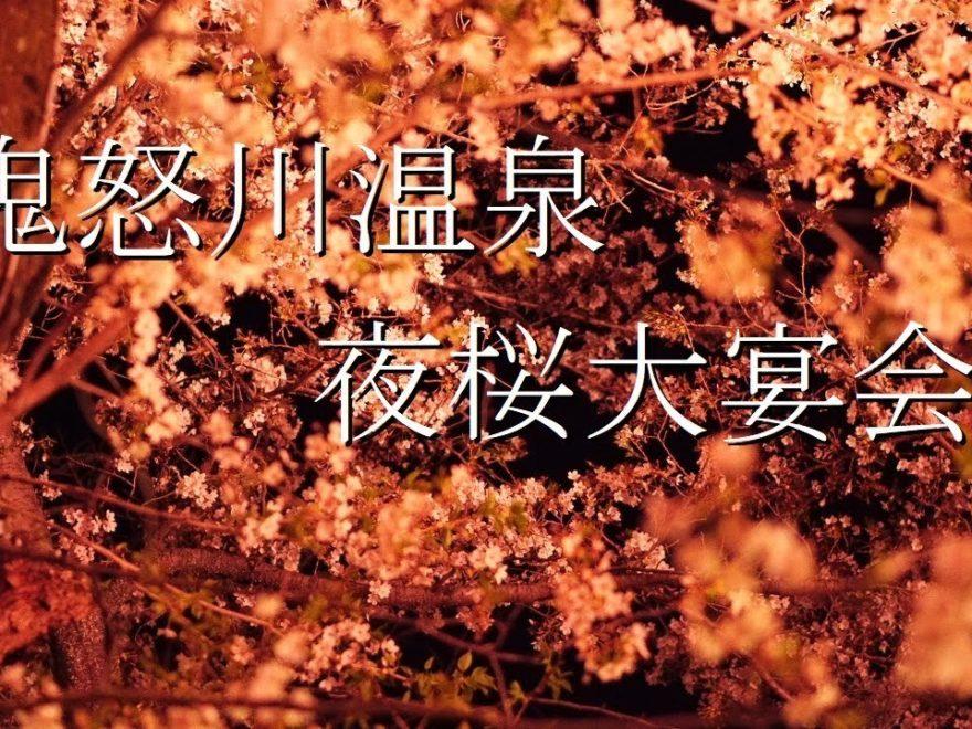 鬼怒川温泉 護国神社・温泉神社(栃木) | 2019年夜桜ライトアップ・見頃情報