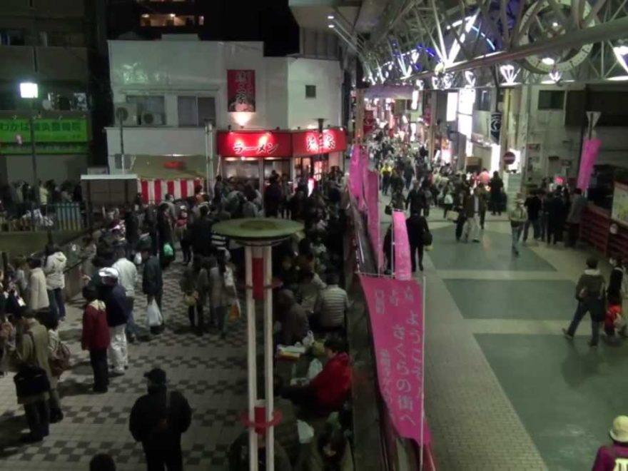 大岡川プロムナード(神奈川) | 2019年夜桜ライトアップ・見頃情報