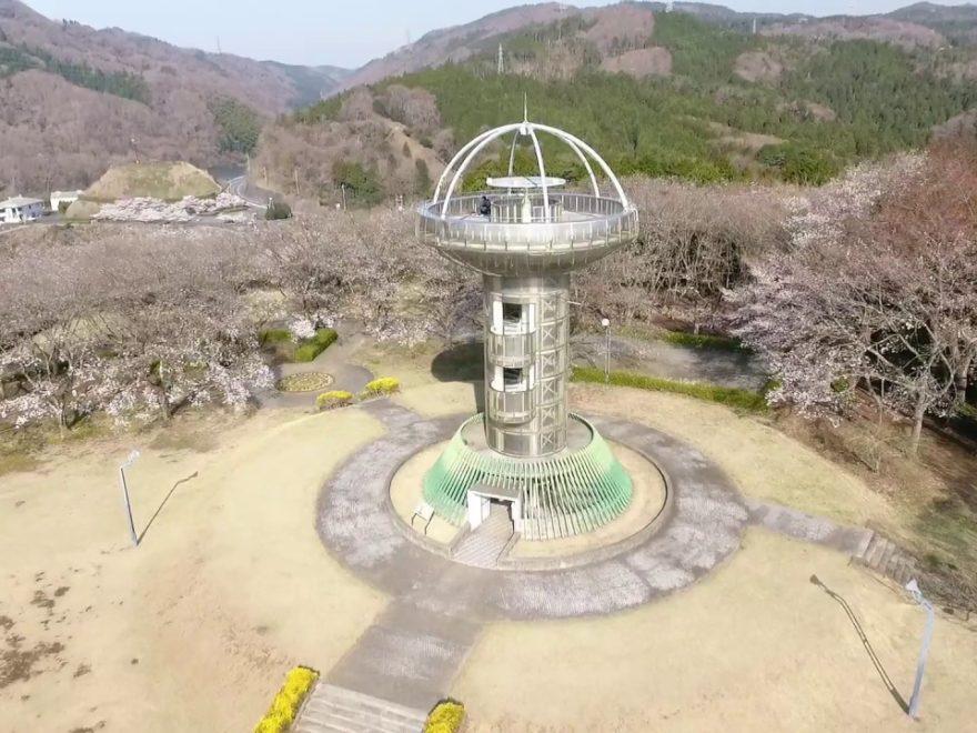 十王パノラマ公園(茨城) | 2019年夜桜ライトアップ・見頃情報