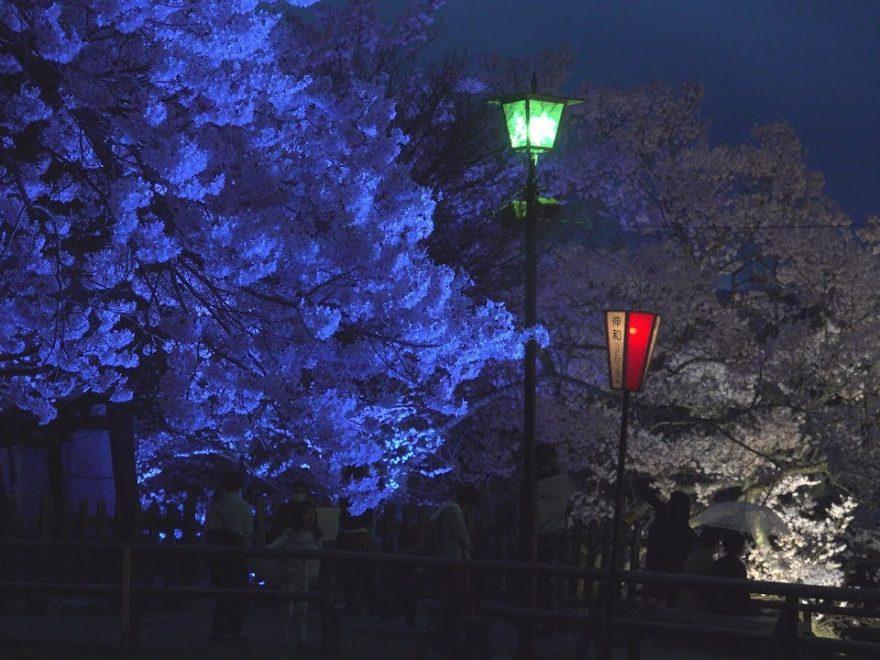 高遠城址公園(長野) | 2019年夜桜ライトアップ・見頃情報