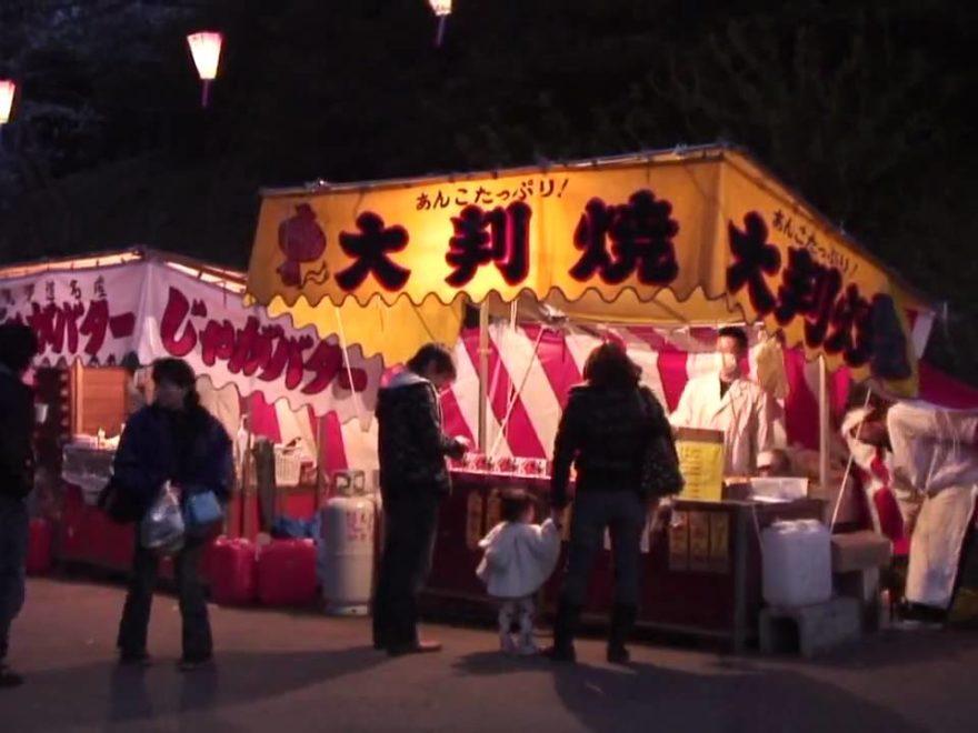 小見川城山公園(千葉) | 2019年夜桜ライトアップ・見頃情報
