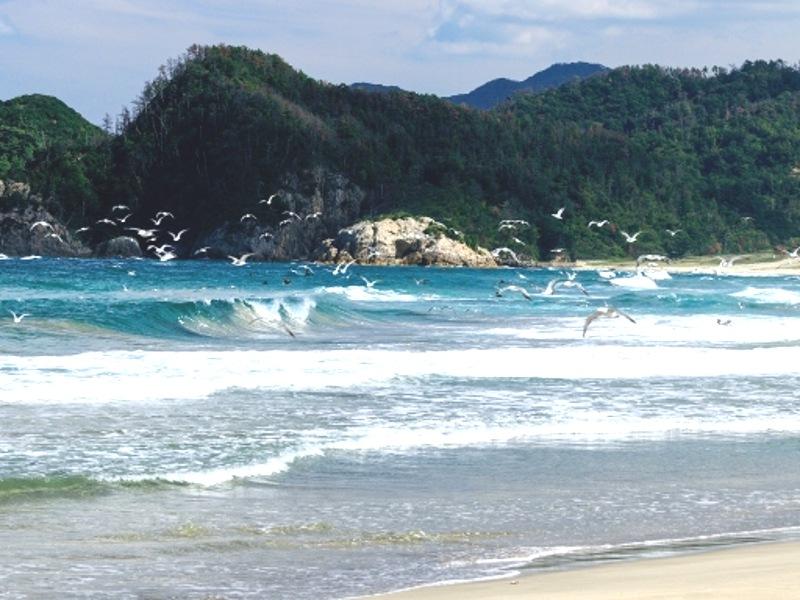 浦富海岸画像