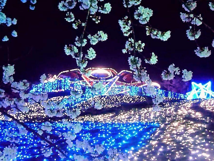 さがみ湖リゾートプレジャーフォレスト(神奈川) | 2019年夜桜ライトアップ・見頃情報