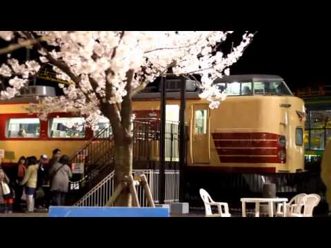 華蔵寺公園(けぞうじこうえん)遊園地(栃木) | 2019年夜桜ライトアップ・見頃情報