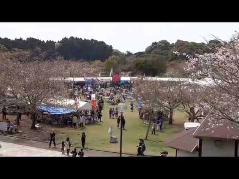 久峰公園(宮崎) | 2019年夜桜ライトアップ・見頃情報