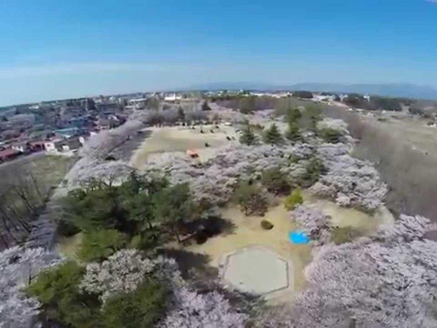 黒磯公園(栃木) | 2019年夜桜ライトアップ・見頃情報