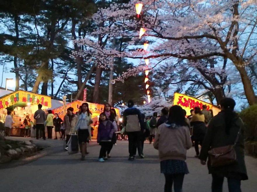 千秋公園(秋田) | 2019年夜桜ライトアップ・見頃情報