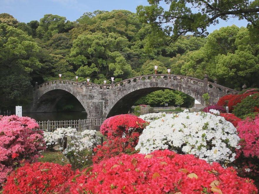 諫早公園(長崎) | 2019年つつじ祭り・見頃情報