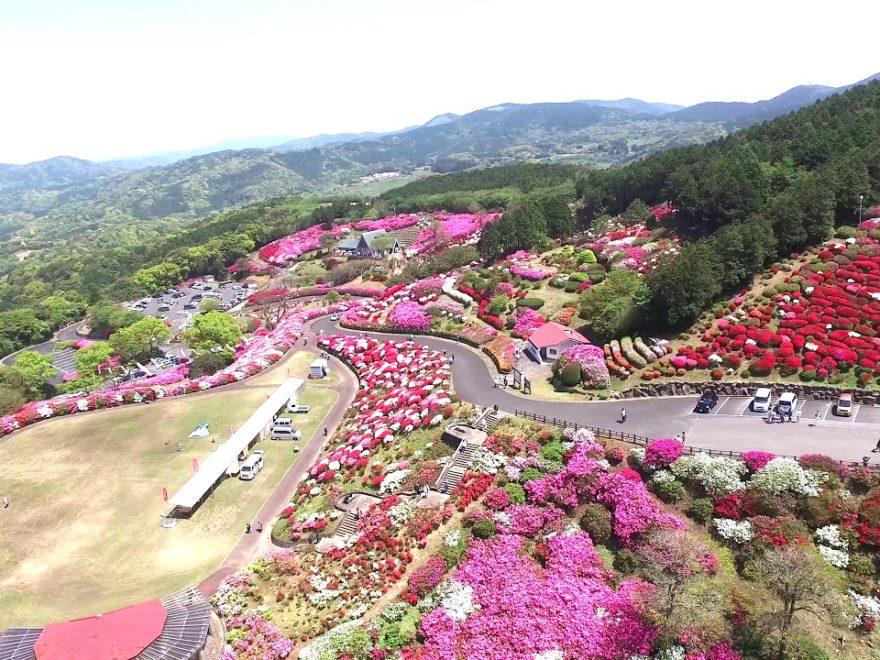 長串山公園(長崎) | 2019年つつじ祭り・見頃情報