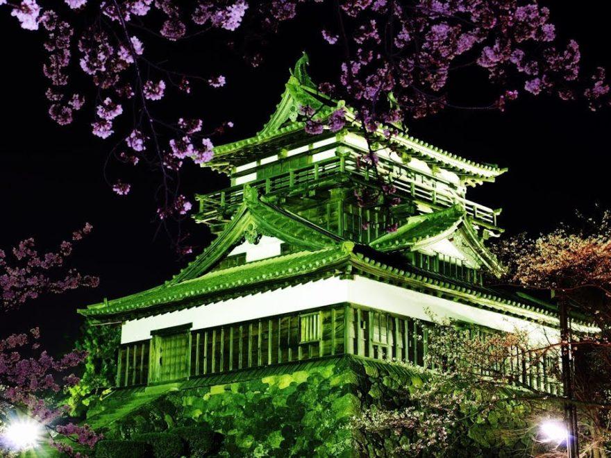 丸岡城・霞ヶ城公園(福井) | 2019年夜桜ライトアップ・見頃情報