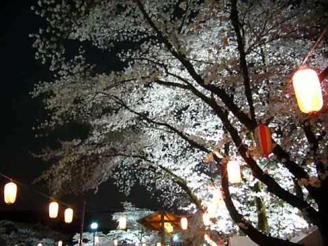羽村堰(東京) | 2019年夜桜ライトアップ・見頃情報